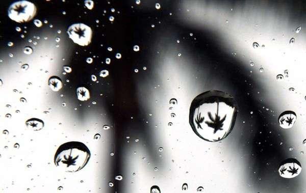 070911_met_rain_clo_949568a